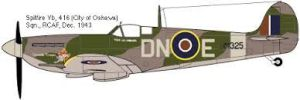 Coloured drawing of What a Spitfire Vb of 416 Squadron - City of Oshawa - would have looked like carrying their DN code